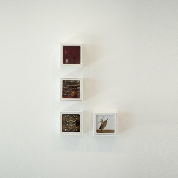 Jeanete Musatti, Som e movimento II