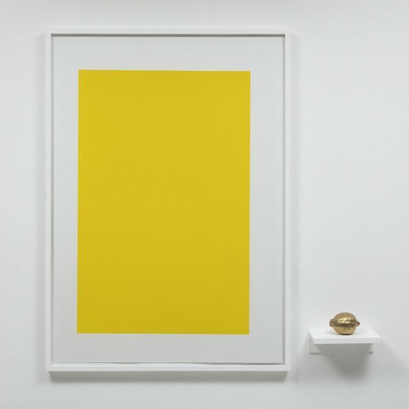 carlos nunes, objeto acrômico (limão)
