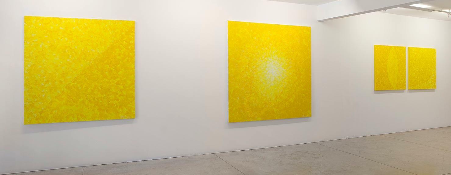 Última exposição individual da artista na Galeria Nara Roesler, em 2013.